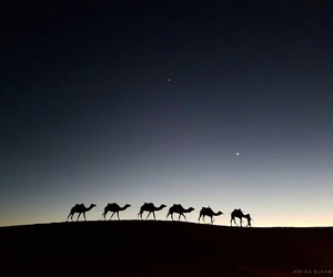 morocco, nuit, and maroc image