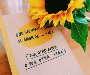 amarillo, girasol, and libro image