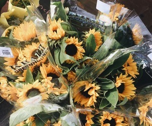 bouquet, sunflowers, and tumblr image