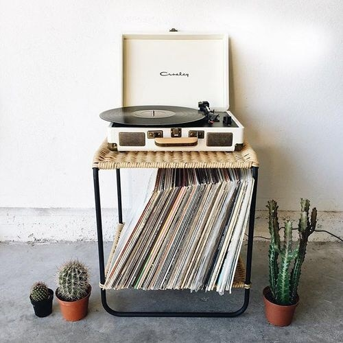 music and cactus image