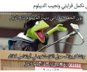 dz, mdr, and algerie image