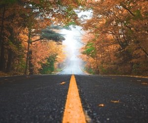 autumn, road, and wallpaper image
