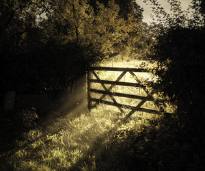 gate, light, and shadow image