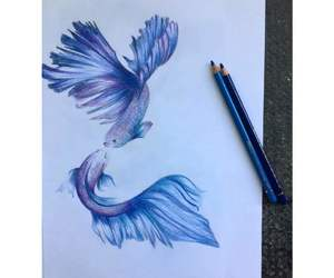 animals, pencil, and drawinf image