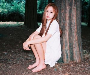 dreamcatcher, girl, and kpop image