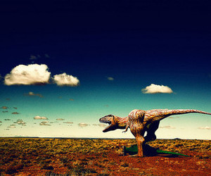 dinosaur and photography image