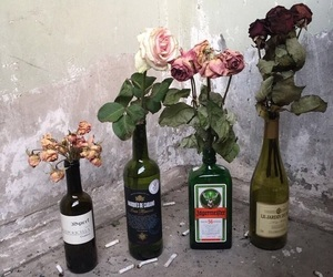 alcohol, bottles, and lovely image