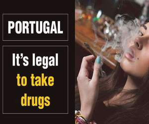 drugs, portugal, and knowledge image