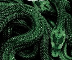 harry potter, movies, and slytherin image