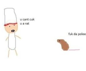 funny, lol, and rat image