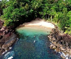 amazing, nature, and brazil image