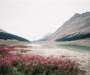 beautiful, hiking, and nature image