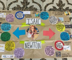 ideas, science, and newton image