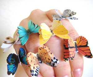 butterfly, fashion, and jewelry image
