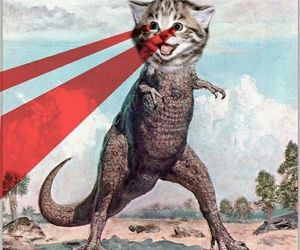 cat and dinosaur image