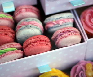 macaroons, food, and colorful image