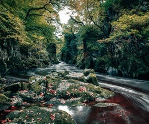autumn, photography, and river image
