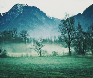 mountains, photography, and tree image