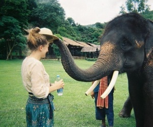 girl, elephant, and cute image