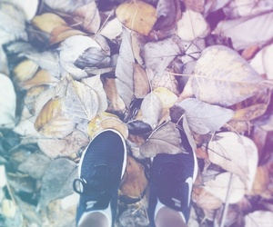 autumn, exercise, and fitness image