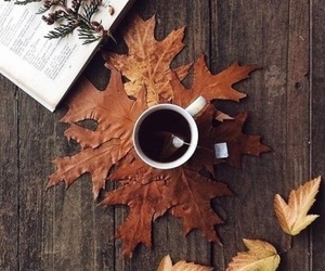 automn, drink, and fall image