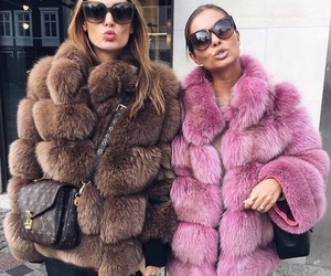 fur and pink image