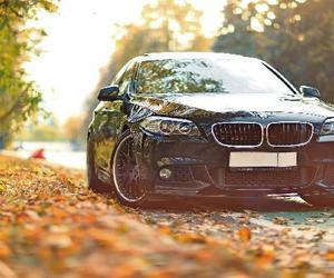 bmw, car, and autumn image