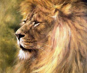 lion, rien poortvliet, and aslan image