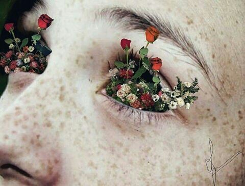 flowers, art, and eyes image