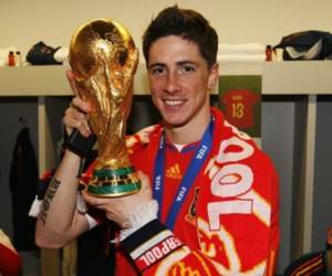 fernando torres and world cup image