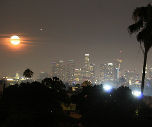 Angeles, buildings, and california image
