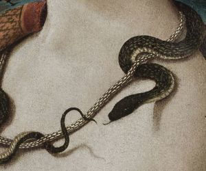 art, painting, and snake image