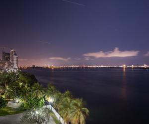 buildings, Miami, and skyline image