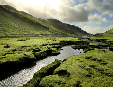 scotland, green, and nature image