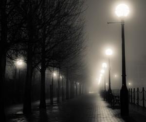night, dark, and light image