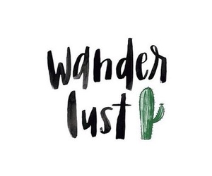 wanderlust, quotes, and cactus image