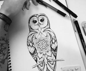 art, bird, and girl image