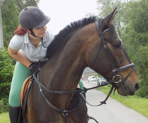 equestrian, friend, and horse image