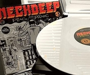 vinyl, neck deep, and the peace and the panic image