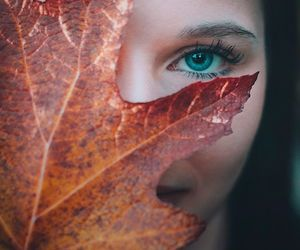 eyes and leaves image