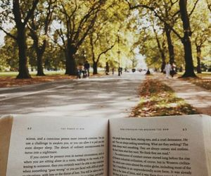 book, nature, and tree image