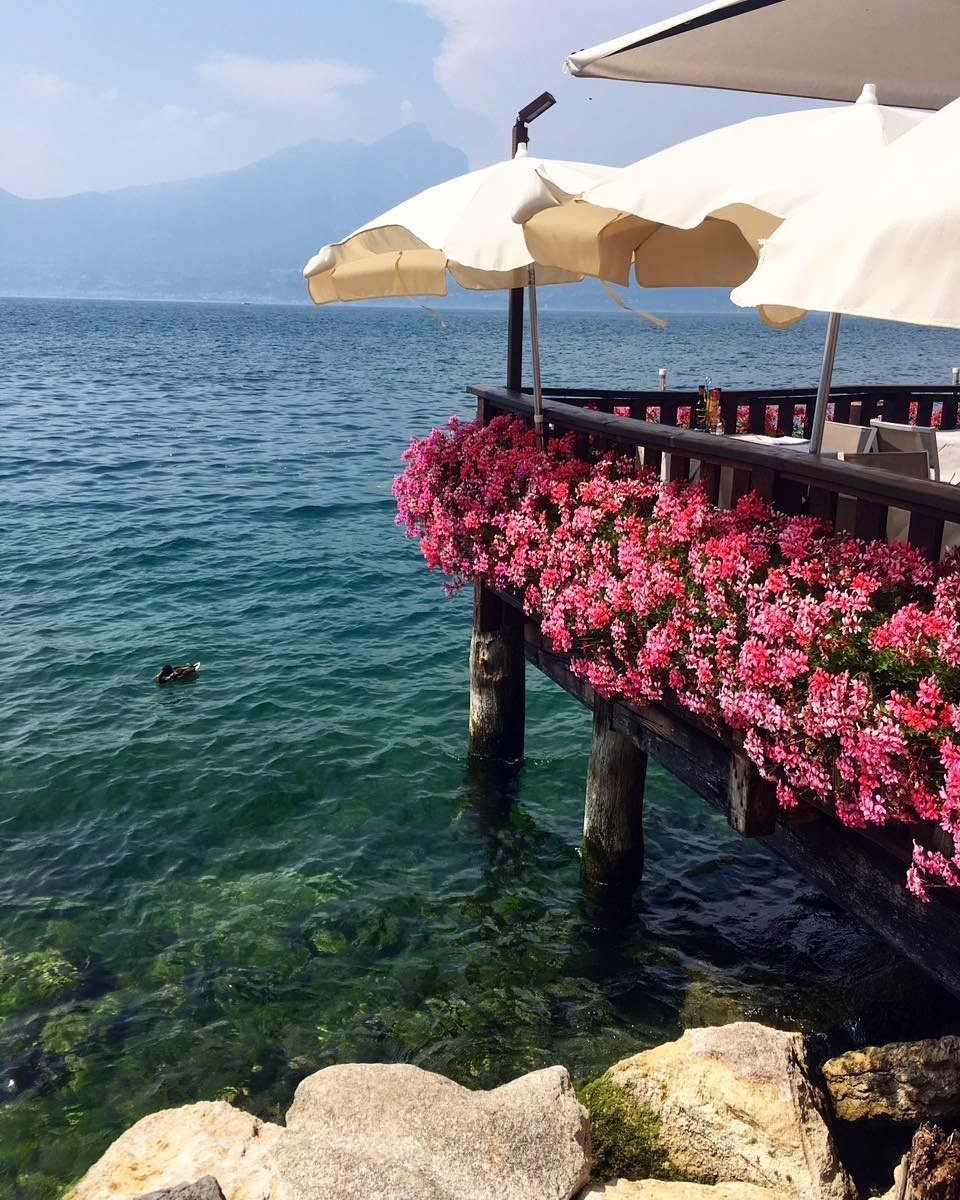 colours, flowers, and lake image