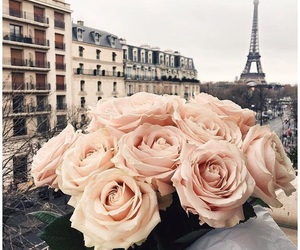 paris, flowers, and beautiful image