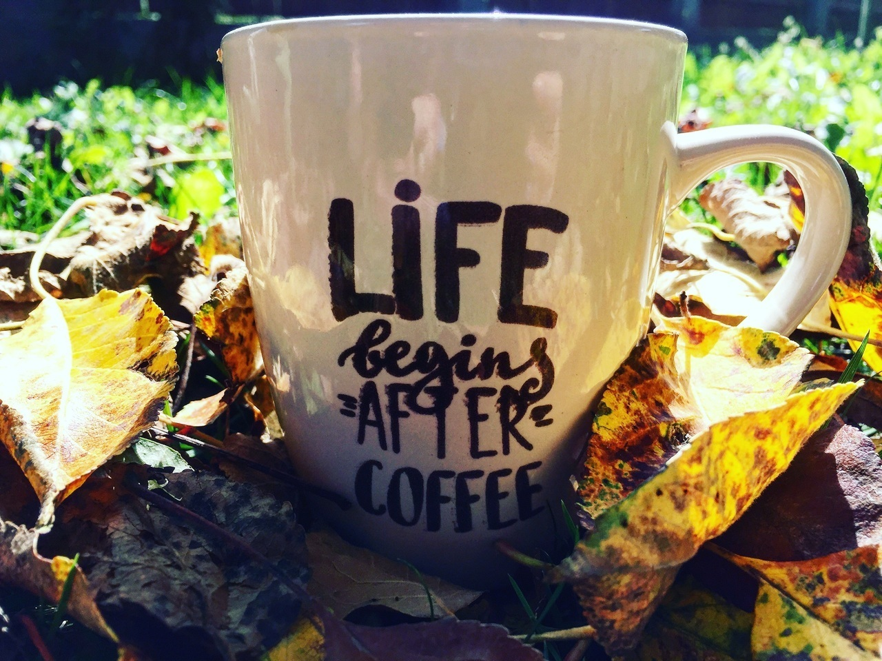 autumn and coffe time image