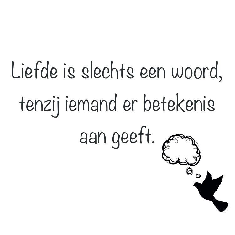 liefde, nederland, and nederlands image