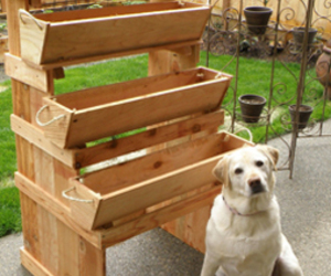 herb garden planter and vegetable planters image