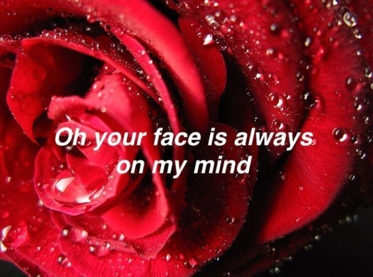 always, face, and rose image