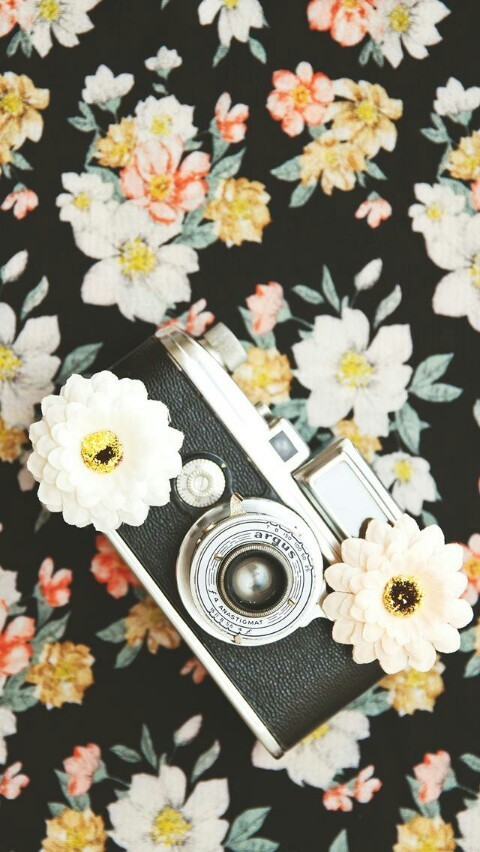 camera and flowers image