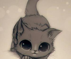 cool cat :)