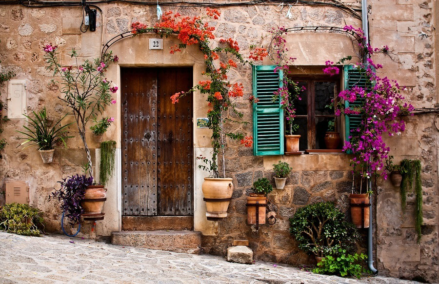 flowers, vintage, and door image